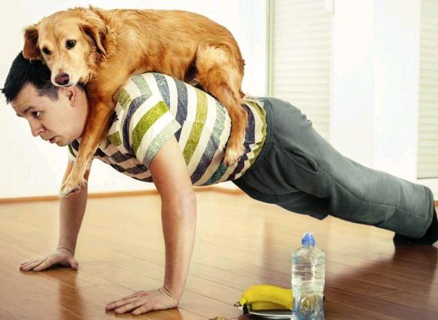dog-on-back